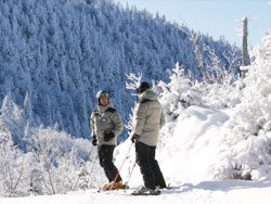 two skiiers on top of a quebec ski hill with the snow covered trees in background