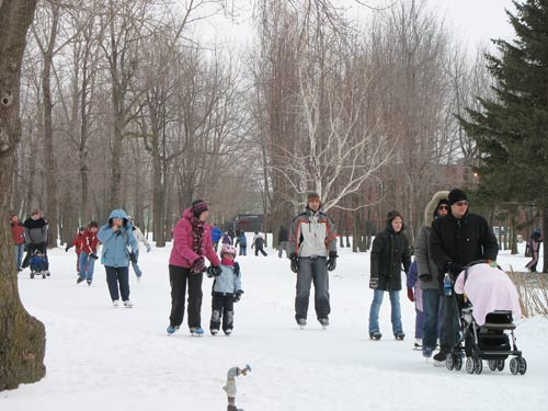 the city floods the walking trails of a local park and transforms them into one giant ice rink