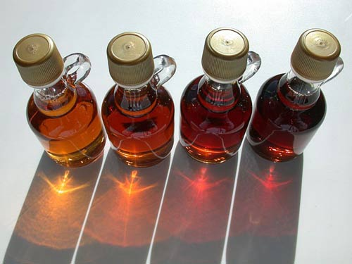 bottles of grade a and grade b maple syrup
